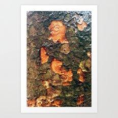 Treetrunks Art Print