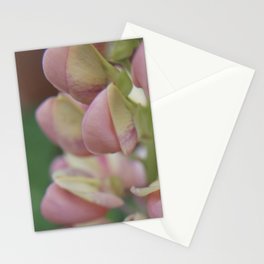Lupine (3) Stationery Cards