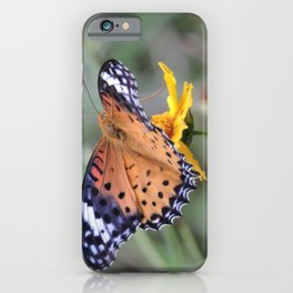 Indian Fritillary in Hangzhou iPhone Case