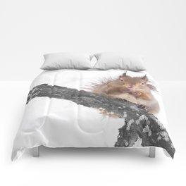 Little squirrel - smack! Comforters