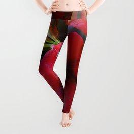 Seamless Red Amaryllis Leggings