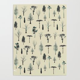 trpical trees Poster
