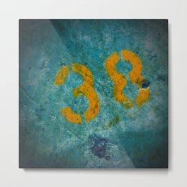 38 Metal Print