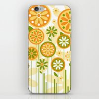 sunshine iPhone & iPod Skins featuring Sunshine by Shelly Bremmer