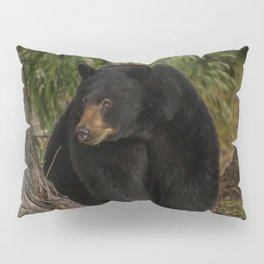 Black Bear in the Woods Pillow Sham