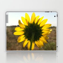 Light through the Sunflower Laptop & iPad Skin