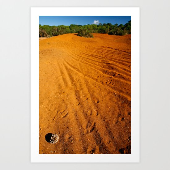 Small desert Art Print