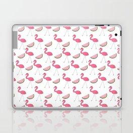 Flamingos and Watermelons Laptop & iPad Skin