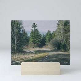The Road To Wonderland Mini Art Print