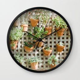Wall of Succulent Plants Wall Clock