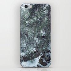 Hemlock Gorge iPhone & iPod Skin
