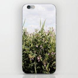 Field of Comfrey iPhone Skin