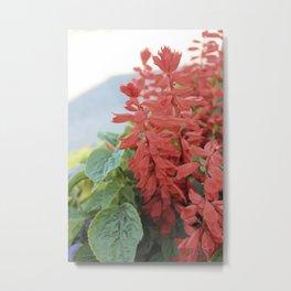 Red Flowers in Vintage Marquette Metal Print