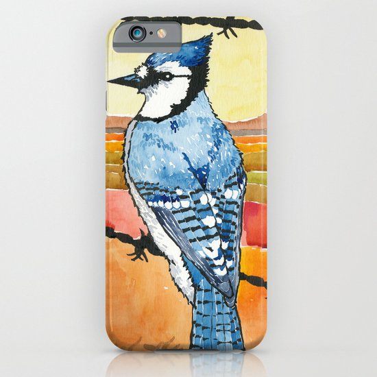 Blue Jay in the Desert iPhone & iPod Case