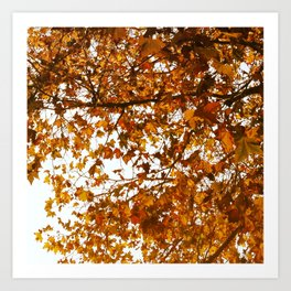 Unbe-leaf-able Art Print