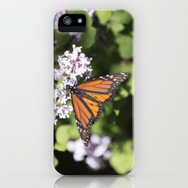 Monarch Butterfly 7 iPhone Case