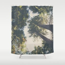 looking up in the Sequoia National Park ... Shower Curtain