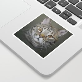 British shorthair cat Sticker