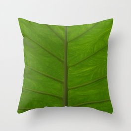 Plant Pathways Throw Pillow