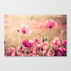 Heaven - poppy flowers photography Canvas Print