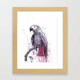 Jewel the Grey Framed Art Print