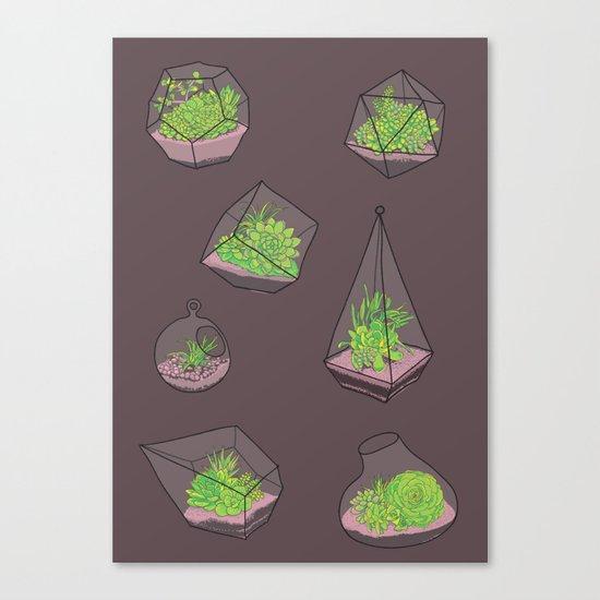 Terrariums Canvas Print