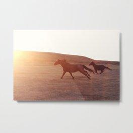 Chasing The Sun Metal Print