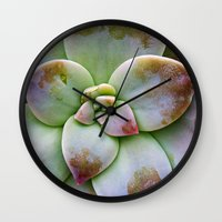 succulent Wall Clocks featuring Succulent by Lindsay Faye