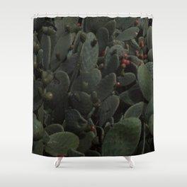Nopal Shower Curtain