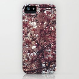 Spring Came Slowly iPhone Case