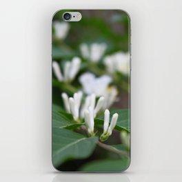 Arboretum 2 iPhone Skin