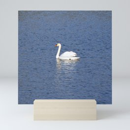The white Swan Mini Art Print