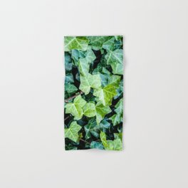Green Ivy Photography Print Hand & Bath Towel
