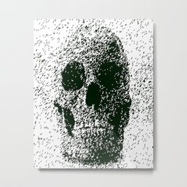 sku11 Metal Print