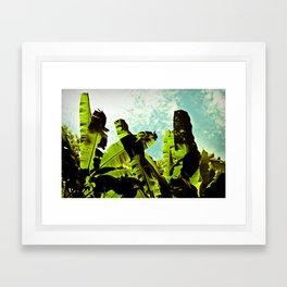 Banana Dreams Framed Art Print