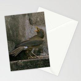 Big Eyed Grieve Stationery Cards