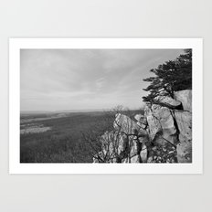 On Top of White Rock Art Print