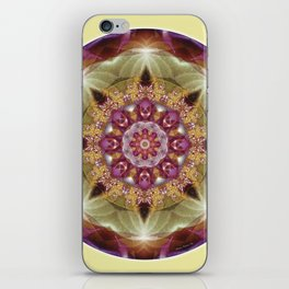 Mandalas from the Heart of Peace 1 iPhone Skin