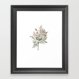 Small Floral Branch Framed Art Print