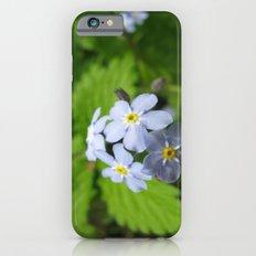 USA - MINNESOTA - Forget-me-nots  iPhone 6s Slim Case