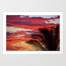 pomegranate sunset Art Print