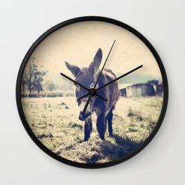 Vintage donkey Wall Clock