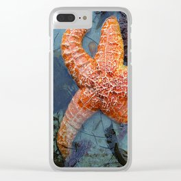 Orange Starfish in Blue Waters Clear iPhone Case