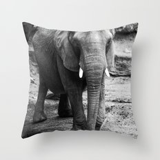 Gentle One Throw Pillow