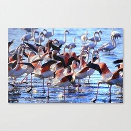 """Pink Dance"". Wilflife. Pink flamingos Canvas Print"