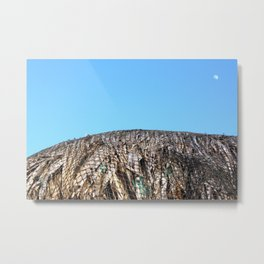 moonshine Metal Print