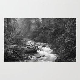 Neahkahnie Creek - Oswald West State Park, Oregon Rug