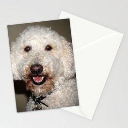 Jake The Labradoodle Stationery Cards