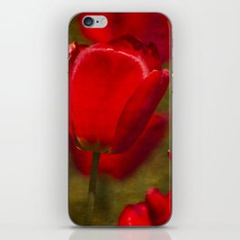 Springing Up Tulips iPhone Skin