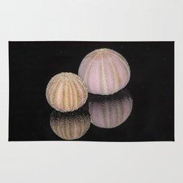 """Reflections"" - Sea Urchin Shells Rug"